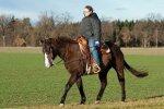 terapia z koniem